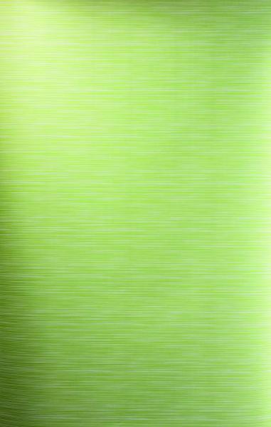 Roto Designo ZRS Sichtschutz-Rollo R6/R8 05/09 Standard Manuell Schiene Weiß 3-R60 Linien grün