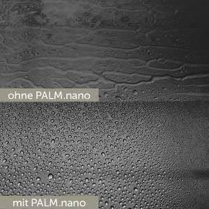 Palm-Nano